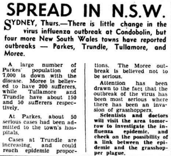 A Central West influenza outbreak brought the population of Parkes to Hobart's newspapers. Source: SPREAD IN N.S.W. (1953, October 30). The Mercury (Hobart, Tas. : 1860 - 1954), p. 1. Retrieved October 12, 2016, from http://nla.gov.au/nla.news-article27175449