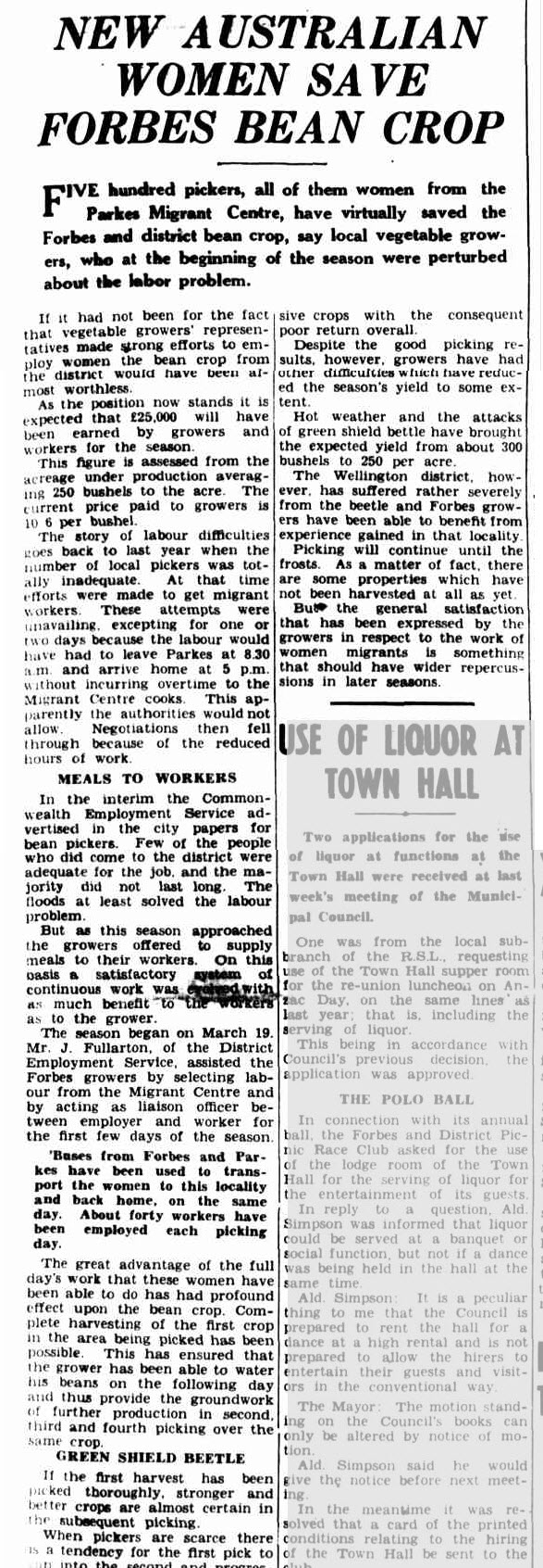 The migrant centre at Parkes saved the town of Forbes not once, but twice! This report details how the women of the Parkes Migrant Centre saved the bean crop of Forbes. Source: NEW AUSTRALIAN WOMEN SAVE FORBES BEAN CROP (1951, April 17). The Forbes Advocate (NSW : 1911 - 1954), p. 1. Retrieved November 28, 2016, from http://nla.gov.au/nla.news-article219101306