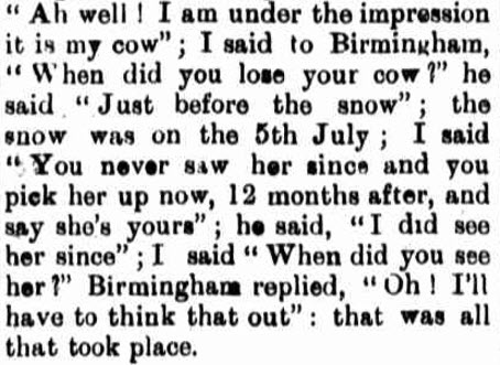 A different way that snow played havoc with livestock. This extract is from an encounter reported by Parkes District Court with the dispute over a missing cow! Source: Western Champion Friday 19 July 1901 page 11