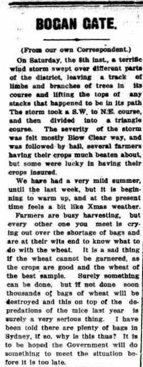 The article highlights more issues for farmers in Bogan Gate. A wind storm caused considerable damage and hampering harvest efforts. Source: Western Champion Thursday 20th December 1917 page 4