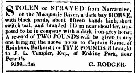 Another early mention of Narromine (although spelt Narramine) refers to another theft. This time it is a horse from Captain Raine. Source: The Sydney Herald Monday 26 April 1841 page 2