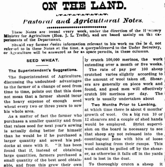 The latest information, supplied by the Ministry of Agriculture, assisted those working the land. Included in this article were the benefits of crop rotation and correct procedure for crutching sheep. Source: The Western Champion Thursday March 20, 1913 page 10