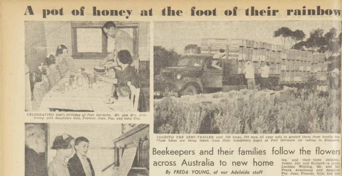 Frank and family's journey interstate in the pursuit of honey was a special feature story in Australian Women's Weekly. To view the whole article click here. Source: The Australian Women's Weekly 16 August 1947 pp.34-35