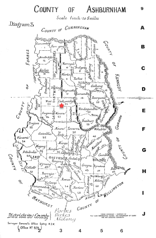 Map of Ashburnham County, highlighting the parish of Cookamidgera in 1881. Source: County & Parish Maps of NSW With Index by Alice Jansen (1991) page 9