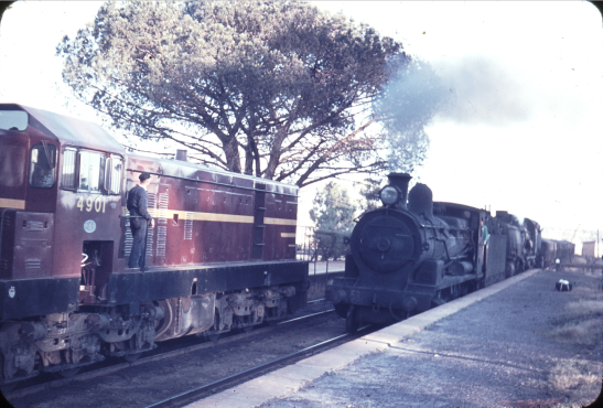 Photograph of trains passing through Cookamidgera railway station taken on April 23, 1962. Source: Weston Langford Railway Photography website