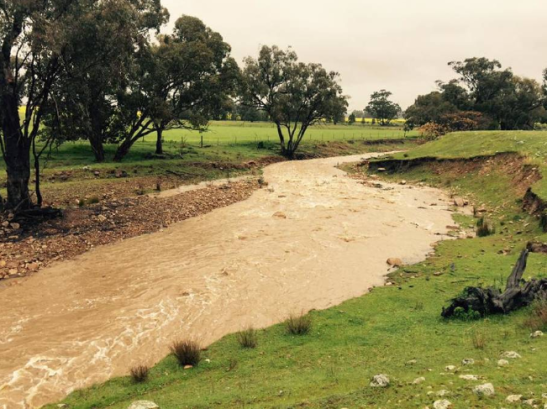 Parkes Champion Post asked readers for photographs of the flood. Cookamidgera resident Tammy Alexander sent this photo in. Source: Parkes Champion Post website
