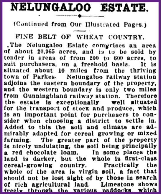 An excerpt from a newspaper report about Nelungaloo Estate, which also describes where it is situated. To read the article in its entirety click here. Source: The Sydney Mail and New South Wales Advertiser Wednesday 7 September, 1910 p.11 at http://nla.gov.au/nla.news-article164341876
