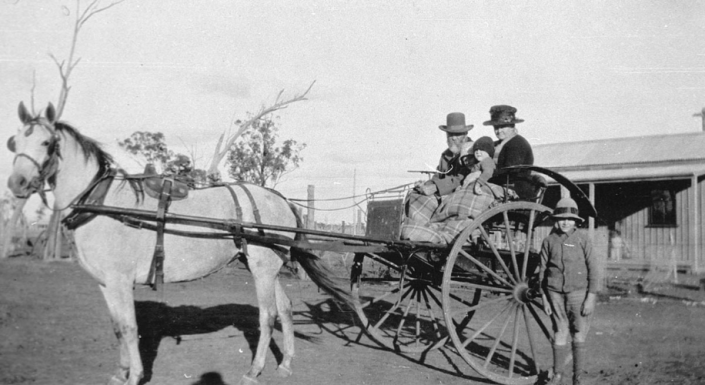 Travelling from Nelungaloo back in the day. Sam and Melissa Freeman with Elsie, Jack and Bert Freeman. Source: NSW State Library Archives at http://digital.sl.nsw.gov.au/delivery/DeliveryManagerServlet?embedded=true&toolbar=false&dps_pid=IE1701558&_ga=2.104316288.1432411973.1576469181-1853509756.1523252311