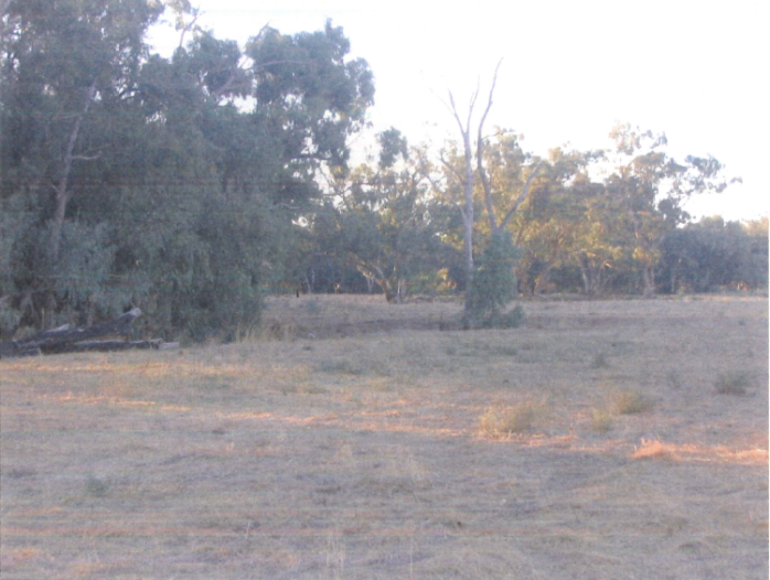The open plain beside the Billabong Creek, close to the site of the shooting. Source: P. Bradley (2006) p. 91