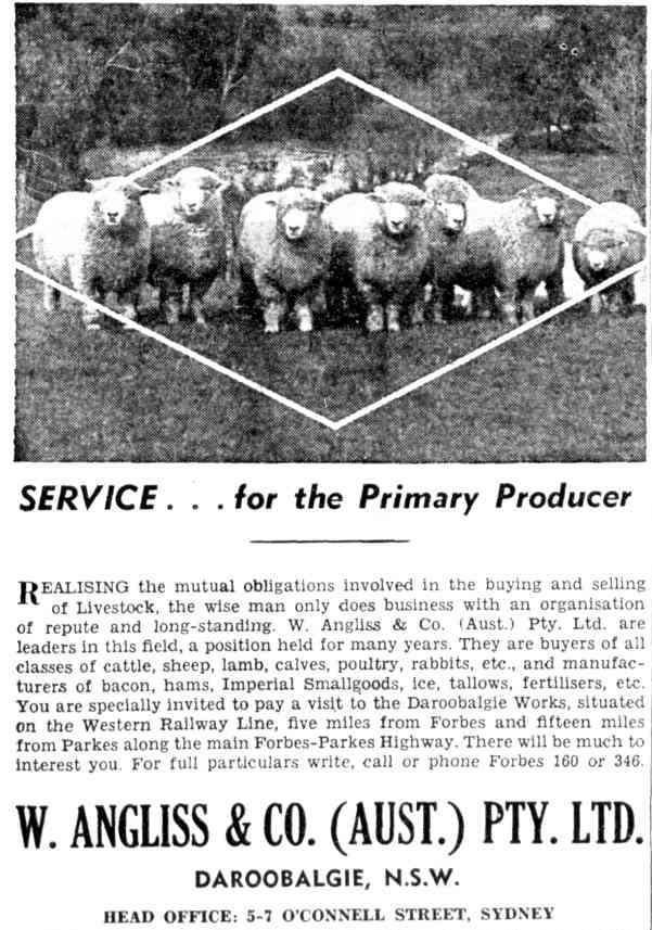 A print advertisement for W. Angliss & Co. Australia based in Daroobalgie. Source: The Farmer and Settler Friday May 20, 1955 p.25 found at http://nla.gov.au/nla.news-article117412483