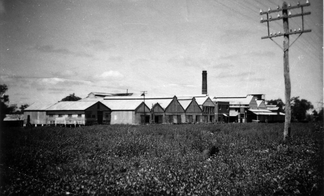 Photograph of Daroobalgie Freezing Works 1958. Source: Forbes Museum found at http://photosau.com.au/Forbes/scripts/ExtSearch.asp?SearchTerm=P00556used with permission