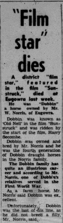"""Sad news prior to the world premiere of Sunstruck. The horse portraying """"Old Nell"""" in the film, Dobbin passed away in Eugowra. Source: Parkes Champion Post Wednesday November 15, 1972 p.13"""