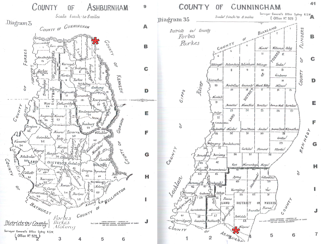 County maps of Ashburnham and Cunningham highlighting the location of Wongalea, situated in the parish of Milpose. Source: County & Parish Maps of NSW with Index by Alice Jansen (1991) pp. 9 & 41