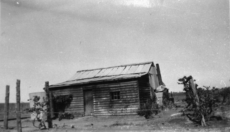 Photograph of Jones family home in Wongalea. Source: NSW State Library